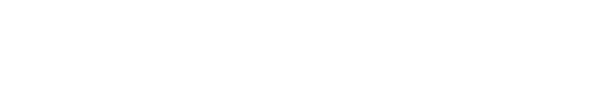 HybridForms - Software for Smart Mobile Business
